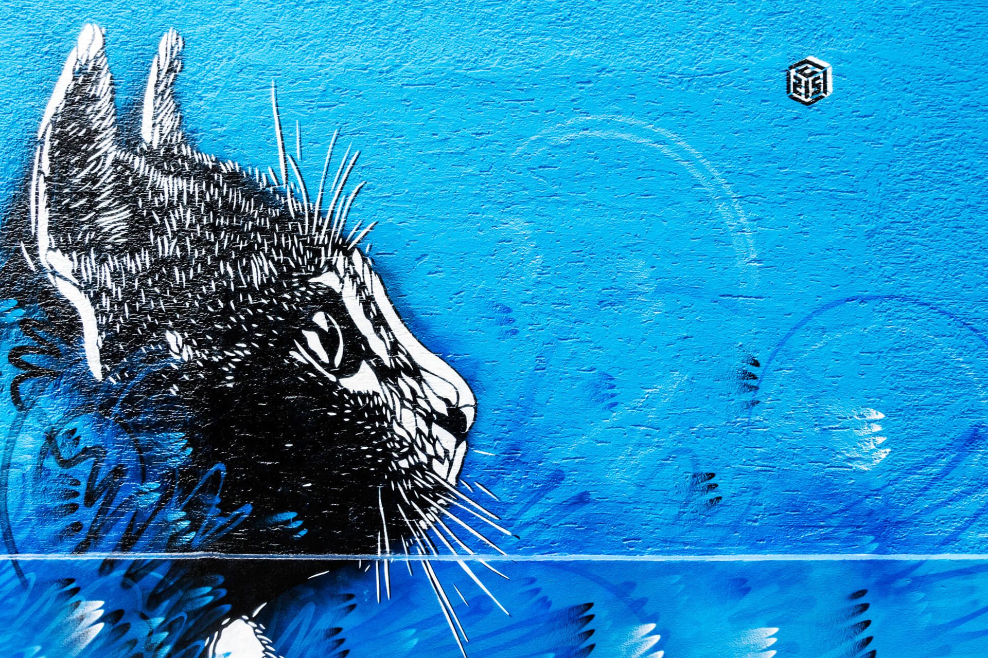 River Tales | Flussgeschichten | 2017 | street art festival | C215